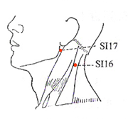 SI-16-17